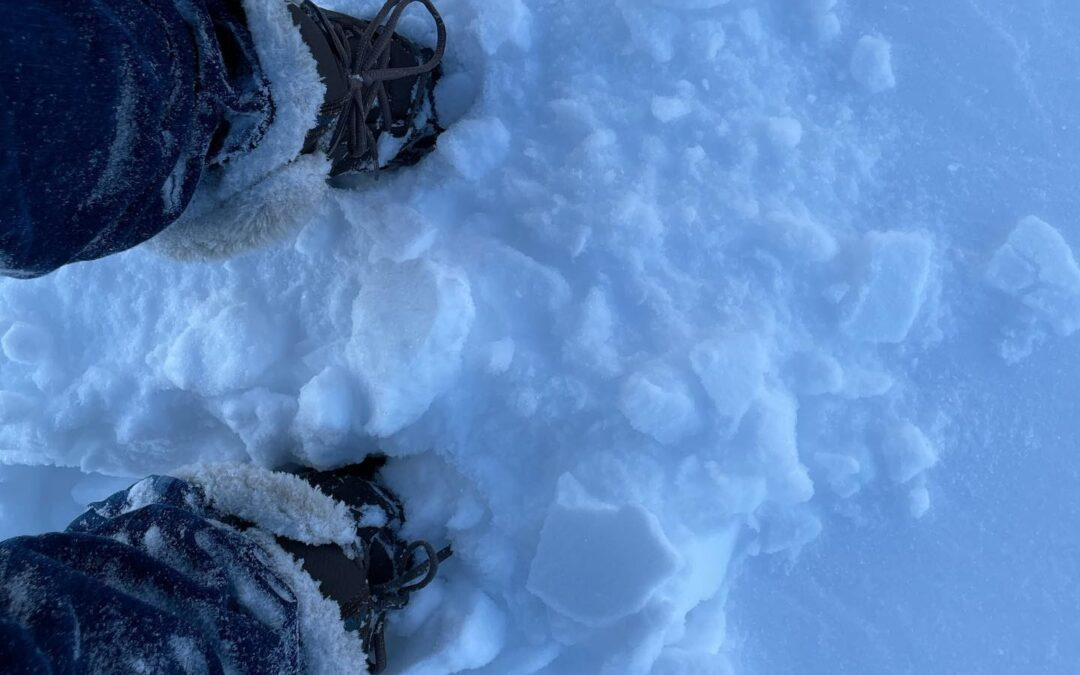 Storytelling and Relationality: Faculty Experiences During the Texas Winter Storm